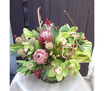 Protea Centerpiece in West Los Angeles CA, Westwood Flower Garden