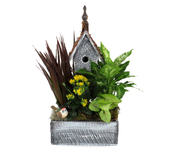 Birdhouse Tropical Plant Planter in Southfield MI, Thrifty Florist