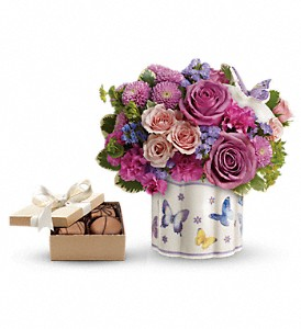 Teleflora's Field Of Butterflies with chocolates in Liverpool NY, Creative Flower & Gift Shop