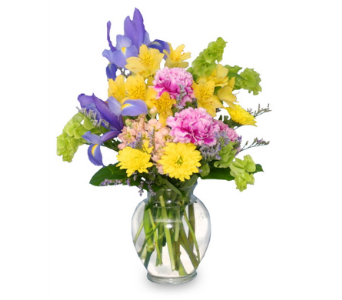 Splash of Spring in Warren MI, Downing's Flowers & Gifts Inc.