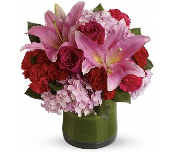 Fabulous in Fuchsia in Norristown PA, Plaza Flowers