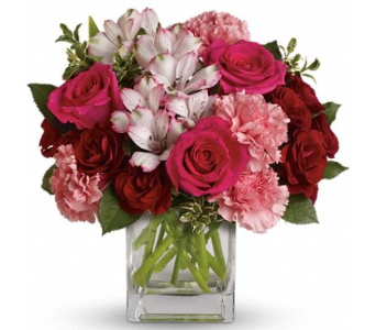 Pink Passion in Norristown PA, Plaza Flowers