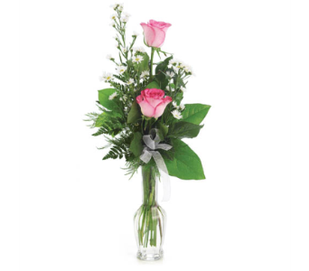 Roses in a Budvase in Nashville TN, Emma's Flowers & Gifts, Inc.