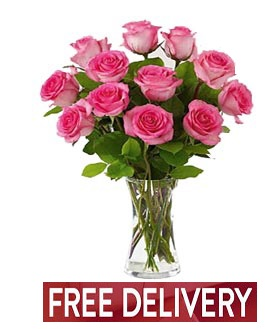 12 Pink Roses - FREE DELIVERY in Cohasset MA, ExoticFlowers.biz