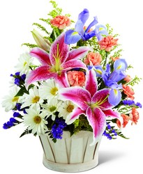Nature''s Wonder - FREE DELIVERY in Cohasset MA, ExoticFlowers.biz