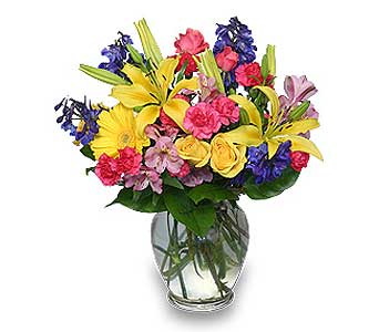 RAINBOW OF BLOOMS in Sayville NY, Sayville Flowers Inc