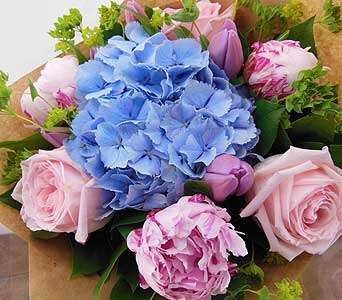 Pink and Blue in North Vancouver BC, Special Moments Flowers And Gifts