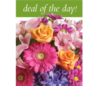 Deal Of The Day! in Sault Ste. Marie ON, Flowers With Flair