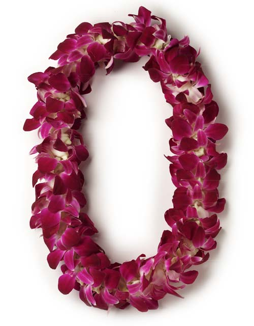 Double Stranded Orchid Lei in San Jose CA, Rosies & Posies Downtown