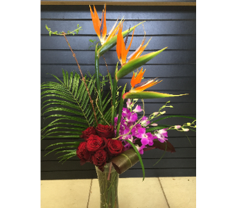 Tropical Love in Lubbock TX, House of Flowers