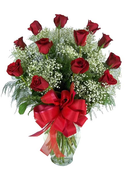 One Dozen Premium Red Roses With Baby's Breath and in Fort Myers FL, Fort Myers Florist, Inc.