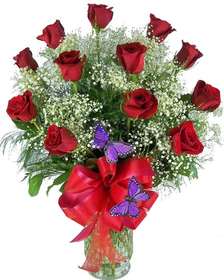 Premium Red Roses, with Butterfly and Bow in Fort Myers FL, Fort Myers Florist, Inc.