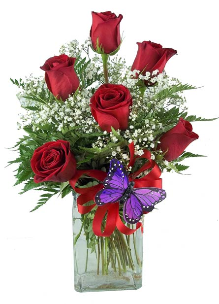 Six Red Roses in Fort Myers FL, Fort Myers Florist, Inc.
