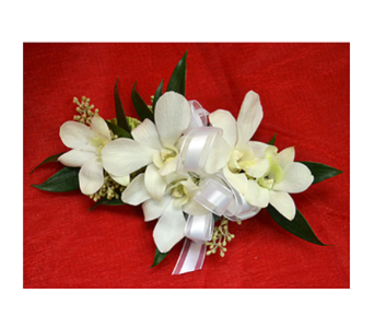 White Orchid Corsage in Easton MD, Robin's Nest
