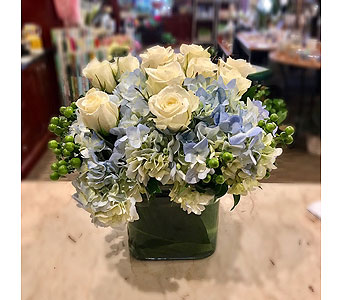 Cherished in Princeton, Plainsboro, & Trenton NJ, Monday Morning Flower and Balloon Co.