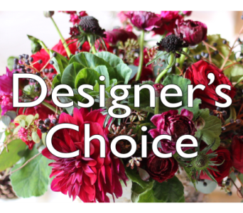 Designer's Choice in Indianapolis IN, McNamara Florist