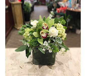 Green With Envy in Princeton, Plainsboro, & Trenton NJ, Monday Morning Flower and Balloon Co.