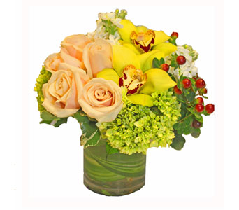 Caf� Au Lait   in Seattle WA, Topper's European Floral Design