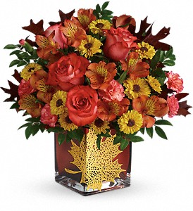 Teleflora's Roses And Maples Bouquet in Chanute KS, Hans' Flowers