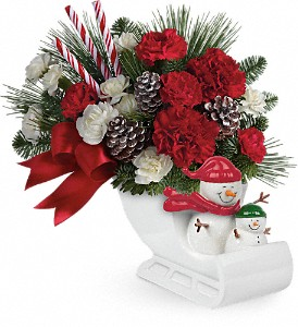Send a Hug Open Sleigh Ride by Teleflora in Lebanon OH, Aretz Designs Uniquely Yours