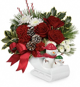 Send a Hug Snow Much Fun by Teleflora in Naperville IL, Naperville Florist
