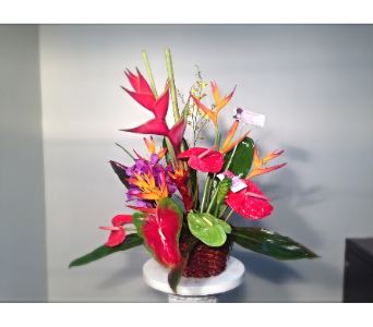 Filer's Tropical Bouquet in Cleveland OH, Filer's Florist Greater Cleveland Flower Co.