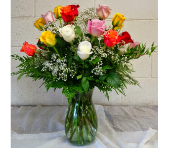 Double Dozen in Color (colors may vary) in Longmont CO, Longmont Florist, Inc.