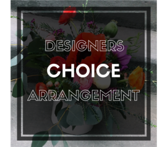 Designers Choice Arrangement in Ft. Collins CO, Palmer Flowers