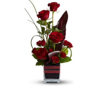Romance Roses in Princeton, Plainsboro, & Trenton NJ, Monday Morning Flower and Balloon Co.