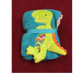 Dinosaur Plush Blanket in Conway AR, Conways Classic Touch