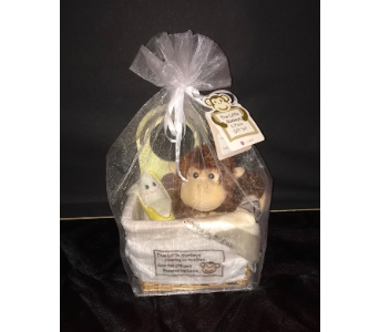 Baby Gift Set in Conway AR, Conways Classic Touch