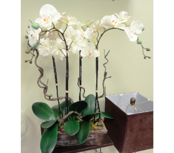 Faux Orchids and Branches  in Tampa FL, Buds Blooms & Beyond