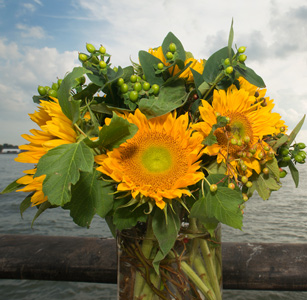NYC Sunflowers in New York NY, Starbright Floral Design