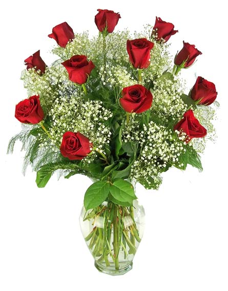 One Dozen Premium Red Roses With Baby's Breath in Winston-Salem NC, George K. Walker Florist