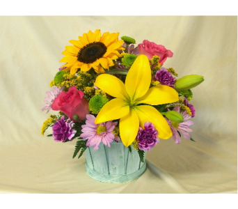 Summer Day Basket in Hollidaysburg PA, Warner's Florist Gifts & Greenhouse