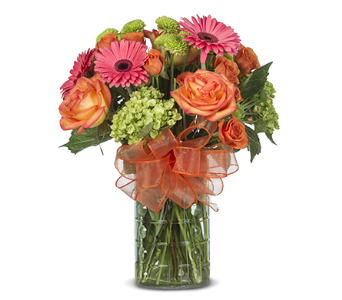 PERFECT DAY in Gainesville FL, Floral Expressions Florist