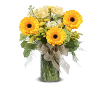 AUTUMN EXPRESSIONS in Gainesville FL, Floral Expressions Florist