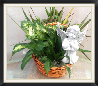 Angel Plant Basket in Tyler TX, The Flower Box