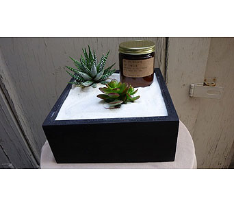 Mojave Succulents & Soy Candle in West Los Angeles CA, Westwood Flower Garden