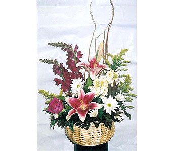 Stargazer Basket in The Woodlands TX, Botanical Flowers and Gifts