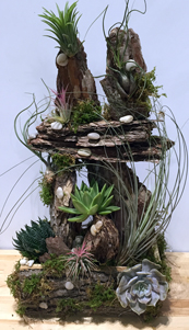 Air Plant Temple in New York NY, Starbright Floral Design