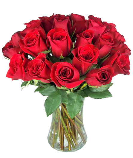 Double Your Love in Fredericksburg VA, Thompson's-Westwood Florist