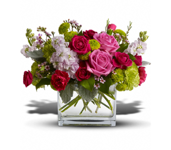Growing Family in South Hadley MA, Carey's Flowers, Inc.