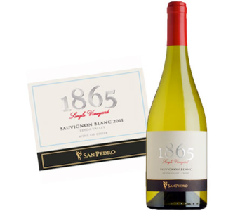 San Pedro 1865 Sauvignon Blanc in Cleves OH, Nature Nook Florist & Wine Shop