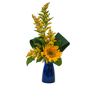 Simply Sunflower in Mount Morris MI, June's Floral Company & Fruit Bouquets