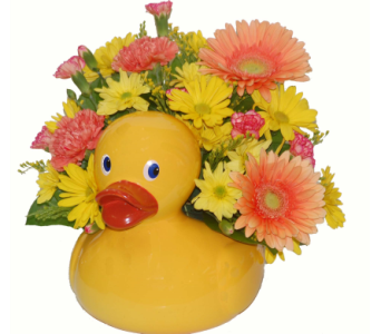 Quack Quack in Scarborough ON, Helen Blakey Flowers