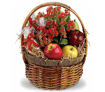 Health Nut Basket