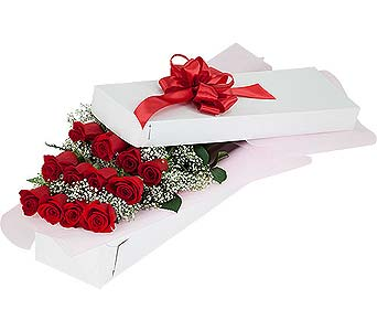 12 Red Roses Boxed in Timmins ON, Timmins Flower Shop Inc.