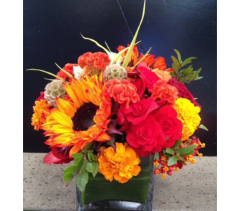 GOLDEN BRIGHTS  BOUQUET in Bellevue WA, CITY FLOWERS, INC.