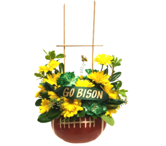 Bison, Game On! by Country Greenery in Moorhead MN, Country Greenery